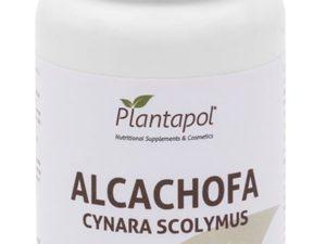 Plantapol Alcachofa